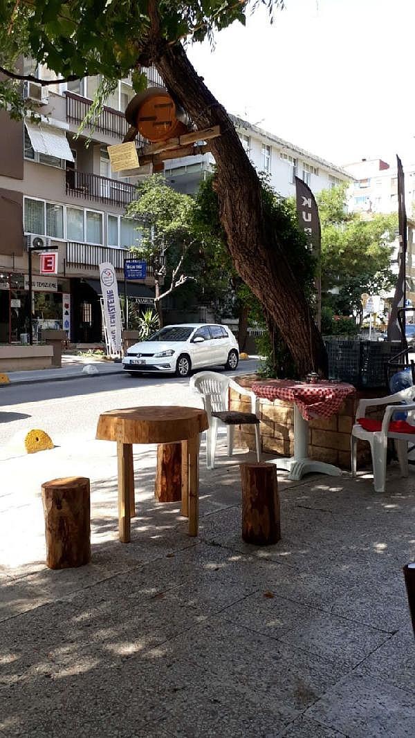 2021/05/rizeli-bakkal-sokak-ortasindaki-agaca-ari-kovani-kurdu-4e1c13845c5e-3.jpg
