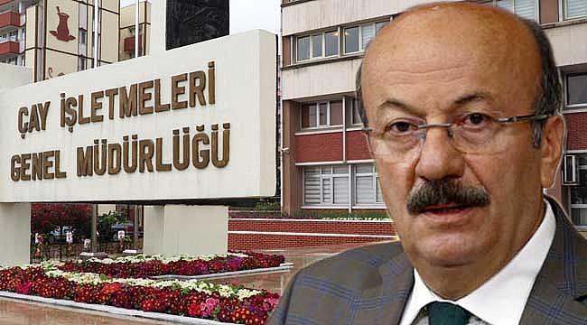 Bekaroğlu: 'Çayda vahşi kapitalizm uygulanıyor'