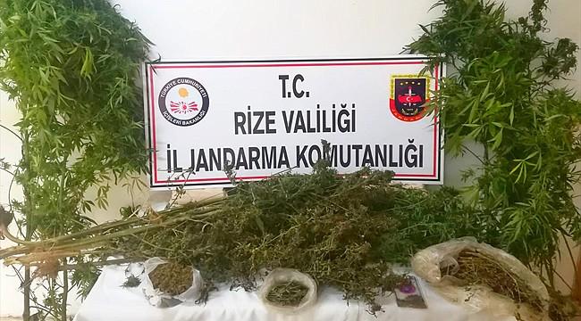 Rize'de esrar operasyonu: 3 gözaltı