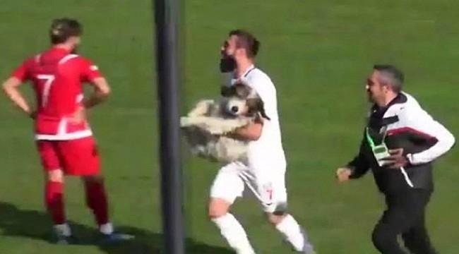 Amatör maçta sahaya giren köpeği futbolcular çıkardı