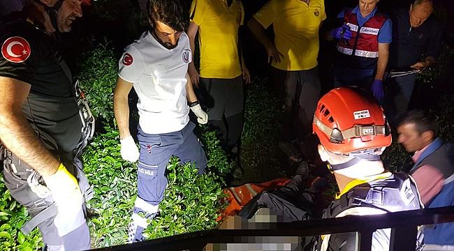 Rize'de çıktığı ağaçta elektrik çarpan kişi öldü