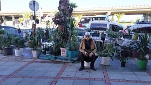 Rize sokaklarını çiçek bahçesine dönüştürüyor
