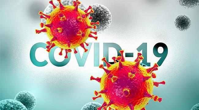 Rize'de 7 koronavirüs vakası var
