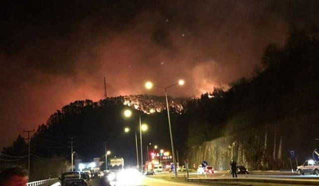 Karadeniz'de orman yangını, hem de kış günü!